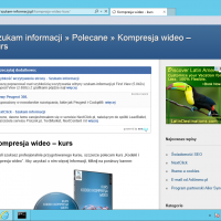 msie-11.0-windows-8